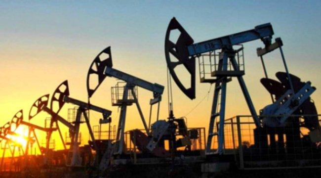 Petrol sondaj kulesi sayısı 733 oldu