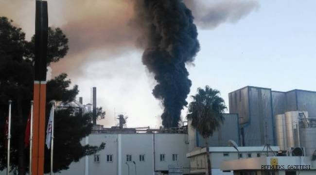 Sunar Mısır'da yangın