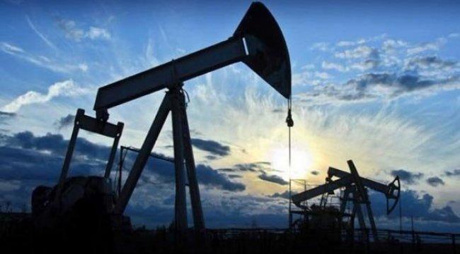 Hindistan gözünü Abu Dhabi'nin petrollerine dikti