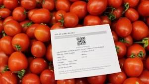Sebze ve meyve satışında künye uyarısı