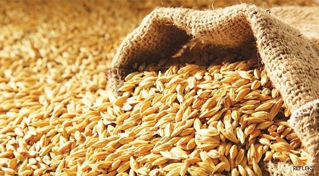 27 bin ton buğday ithalatında sahte belge iddiası