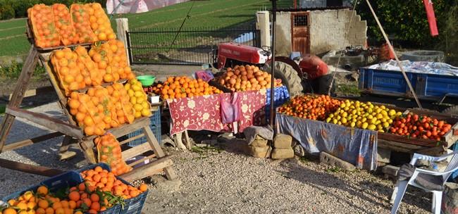 Adana'dan hediyelik portakal