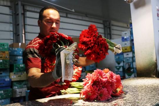Çiçekçiler korsanlardan dertli