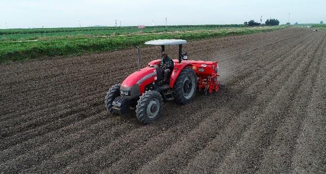 Çukurova'da pamuk toprakla buluştu, çiftçi destek bekliyor