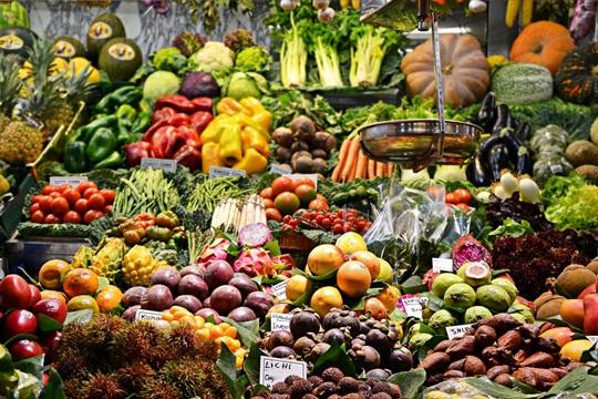 Her yıl 18,8 milyon ton gıda çöpe gidiyor